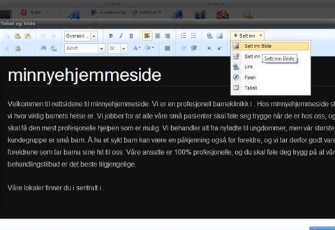 Redigeringsverktøyet har elementer fra Microsoft Word. Foto: Webnode