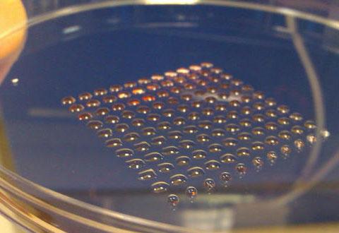 Forskere har laget en 3D-skriver som beskytter stamceller i små kuler. Foto: Heriot-Watt University