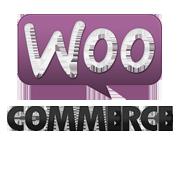 woocommerce-multi-store-shop